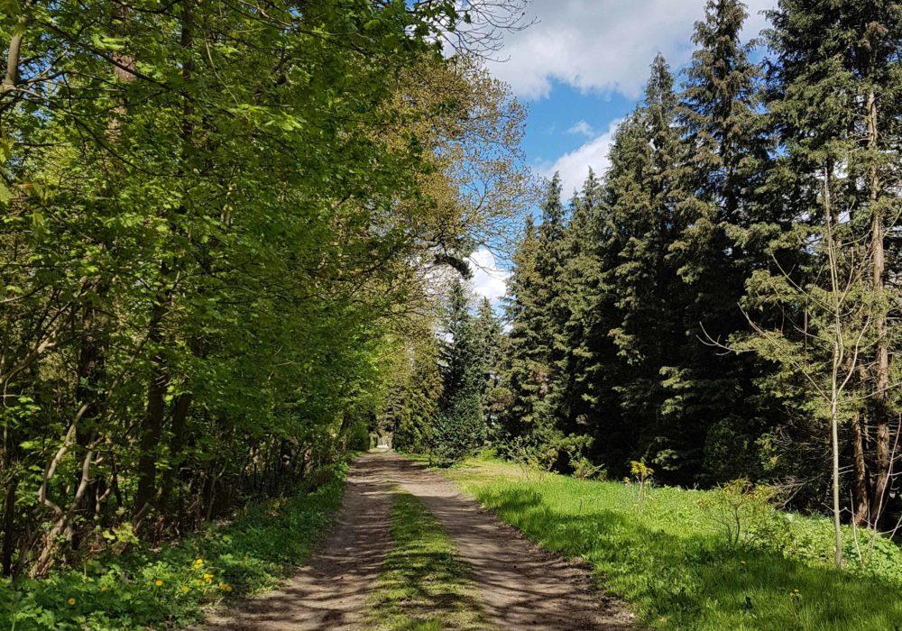 Parkplätze Naturhof Usedom
